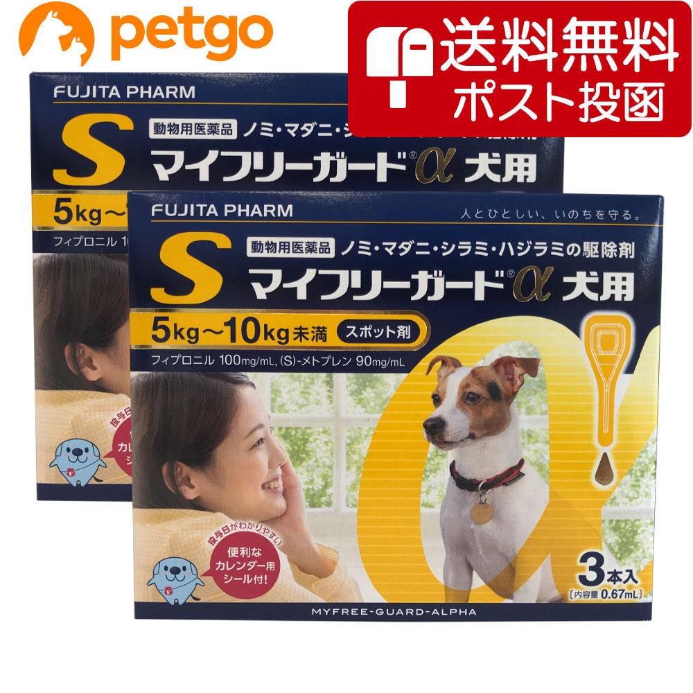 【ネコポス(同梱不可)】【2箱セット】マイフリーガードα 犬用 S 5~10kg 3本(動物用医薬品)【あす楽】