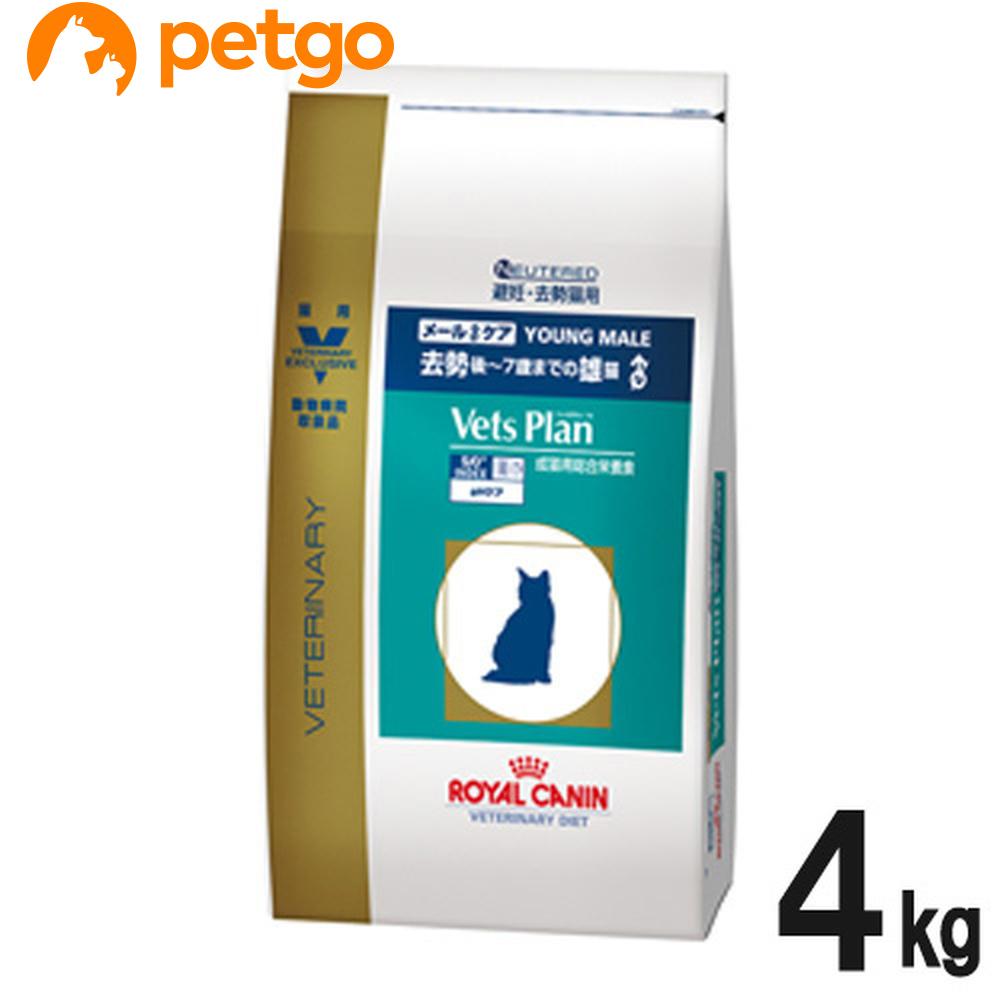 メーカー在庫限り品 ロイヤルカナン ベッツプラン 猫用 メールケア 4kg 時間指定不可 あす楽