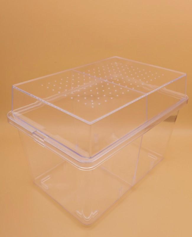 中型のカブトやクワガタに適した昆虫飼育ケースです デジケース 物品 ×1個 レビューを書けば送料当店負担 HR-2G