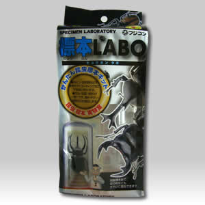 誰にでも簡単に美しい標本が作れます 標本LABO SALE 上品