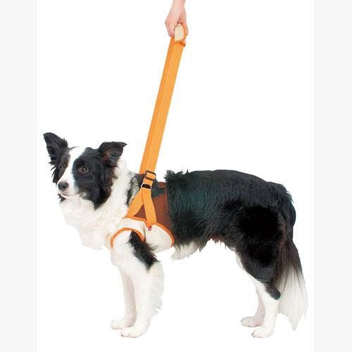 ペティオ zuttone ずっとね 老犬介護用 歩行補助ハーネス 前足用K 2L 胴輪 ハーネス 繊維 犬 介護期 中型犬 ブルテリア ボーダーコリー等 ~20kg Petio