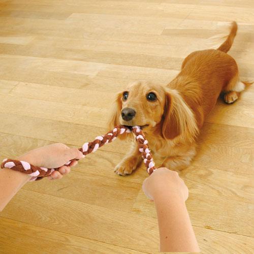 アドメイト ロープTOY チュロス ストロベリー SS 犬用 おもちゃ コットン 超小型犬 短毛犬 長毛犬 引っ張って楽しく遊べる 柔らかいパイル生地使用 Add.Mate