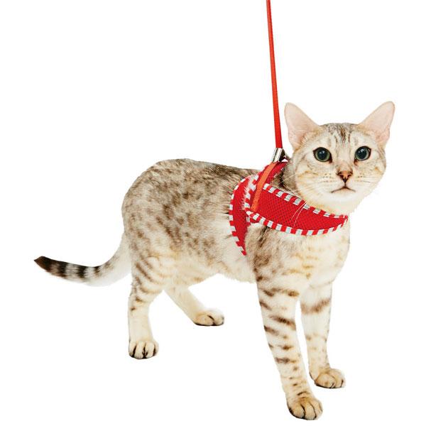 ペティオ Anycat ハーネス シンプル M グレー 灰 全猫種 ネコ用 胴輪 ハーネス 生地 布 猫 ネコ 短毛猫 長毛猫 ~7kg 365日気分が高まる!さまざまなネコちゃんにぴったり Petio