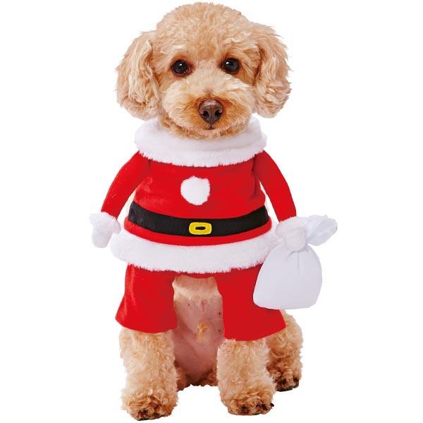 前足を通すだけ コスプレサンタで盛り上がろう SNS ブログなどの撮影にもピッタリ 手洗い可能 ペティオ クリスマス 犬用変身着ぐるみウェア サンタボーイ イヌ Petio M コスプレ 安心と信頼 犬服 超小型犬~小型犬 数量限定 長毛犬 短毛犬