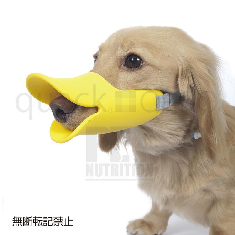 拾い食いや無駄吠えを抑制 OPPO ご注文で当日配送 ペット用口輪 quack 新商品 クァック イエロー Mサイズ