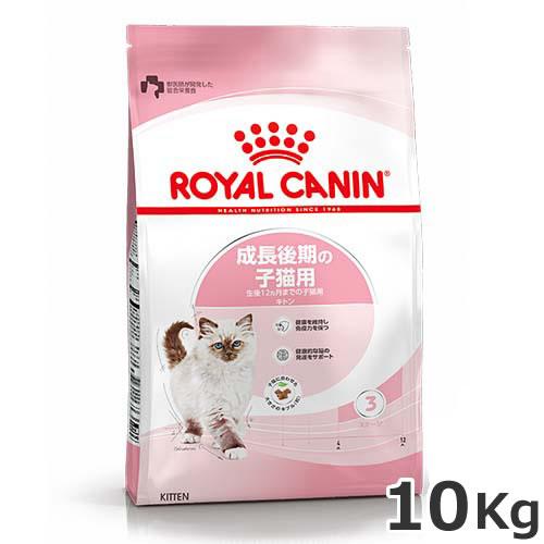 ●ロイヤルカナン キトン 10kg 生後12ヶ月齢までの子猫用