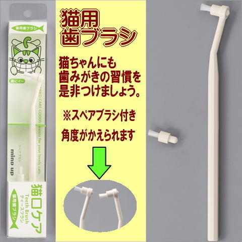 Toothbrush pussy mouth care for cats