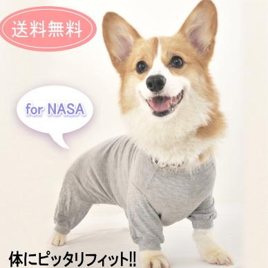 超美品再入荷品質至上 NASA仕様の体温調節機能素材 送料無料ポスト投函 TピースC-E コーギー用 医療用保護着 介護 ウエア サービス 洋服 犬用品 ペット用品 コーギー
