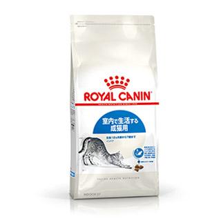 室内猫用のキャットフード 当店一番人気 ロイヤルカナン インドア 10kg 1~7歳 通販 激安