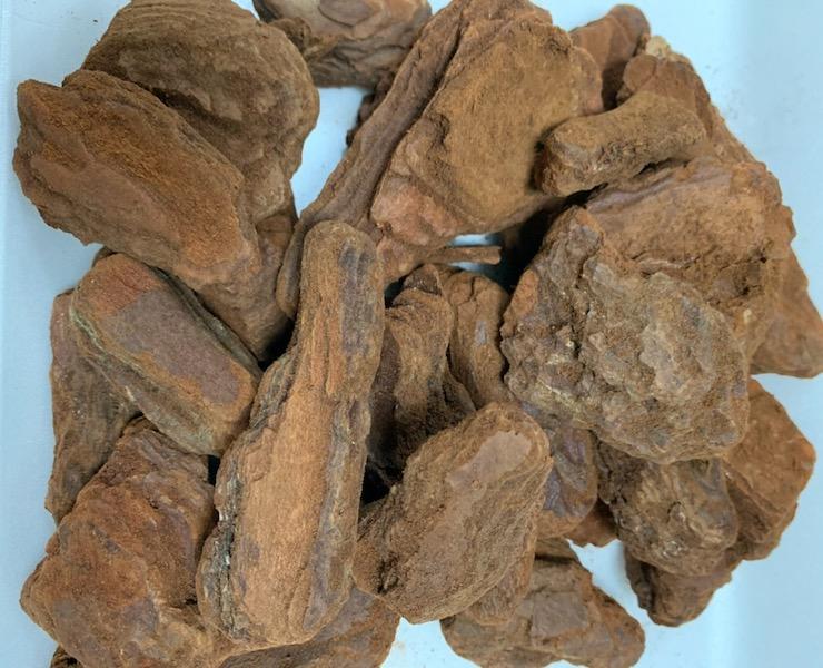 バークチップ 爬虫類 開店記念セール 床材 再再販 爬虫類用床材 Mサイズ 約10L DBP 昆虫マット 敷砂 敷き材 陸棲用 赤松樹皮
