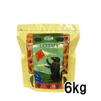 アレルギー源とされる 小麦 大豆 副産物 は一切不使用 ロータス アダルト 《週末限定タイムセール》 ラムレシピ 6kg LOTUS ロ―タス 新作 人気 送料無料 39ショップ ペットフード DOG 正規品 ドッグフード FOOD ドライフード 成犬用
