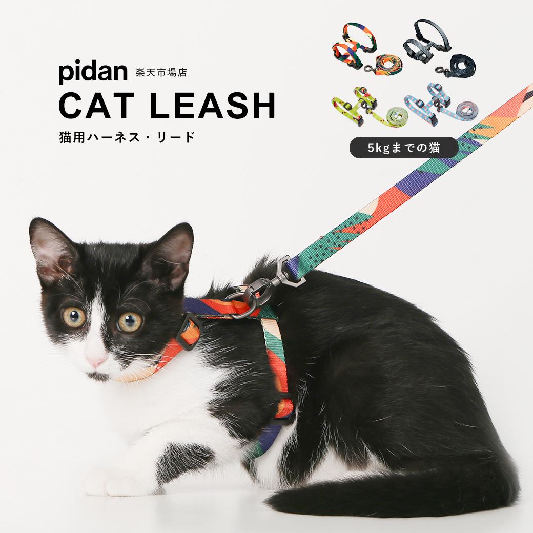 pidan ピダン 在庫あり 猫 ハーネス リード リード付 2点セット 猫用ハーネスリードセット 直営限定アウトレット 猫用 おしゃれ ネコ