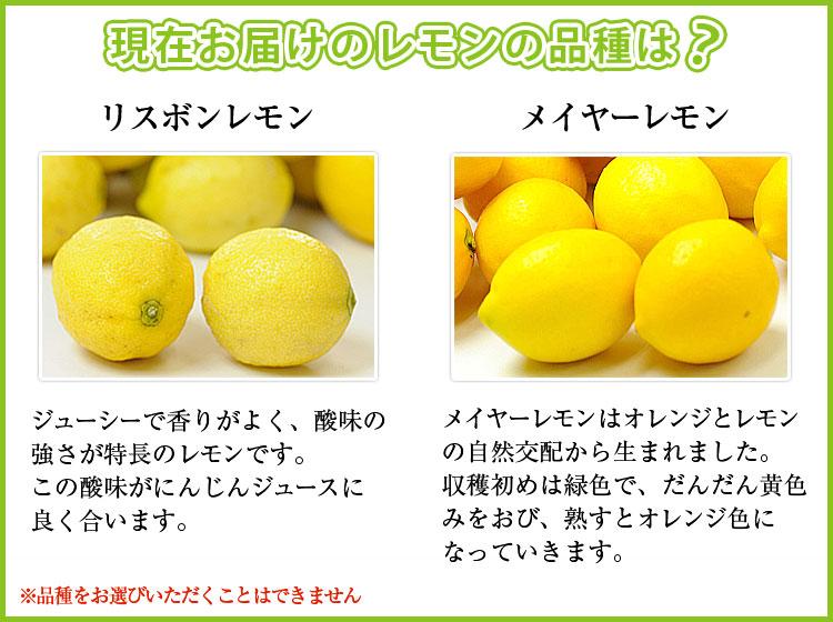 【月間購入】レモン1Kg入り 「1ヶ月3回コース」
