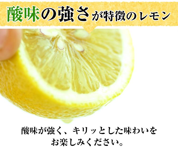 レモンが希少なこの時期に! 国産レモン 1kg 【檸檬】【人参ジュース】 特別栽培 愛媛県産