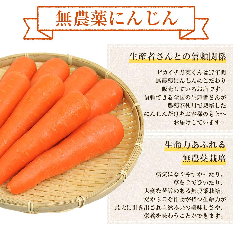 無農薬にんじん野菜セット(無農薬にんじん5kg+りんご2kg) にんじんジュース キット コールドプレスジュース用 朝食キット 常温便 りんご 無農薬 酵素 生酵素 ゲルソン療法 あす楽
