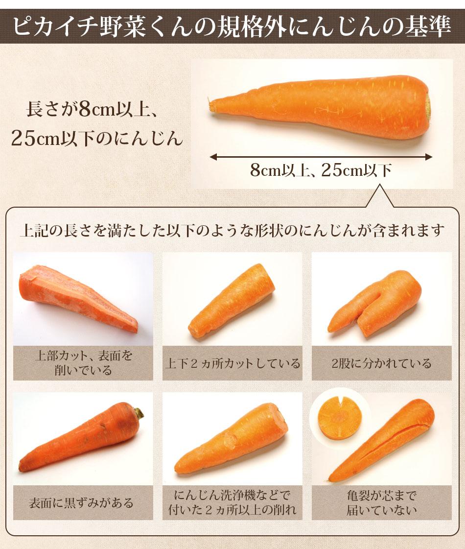 【訳あり】国産 無農薬にんじん ジュース用 1kg 酵素 生酵素 ゲルソン療法 無農薬 あす楽