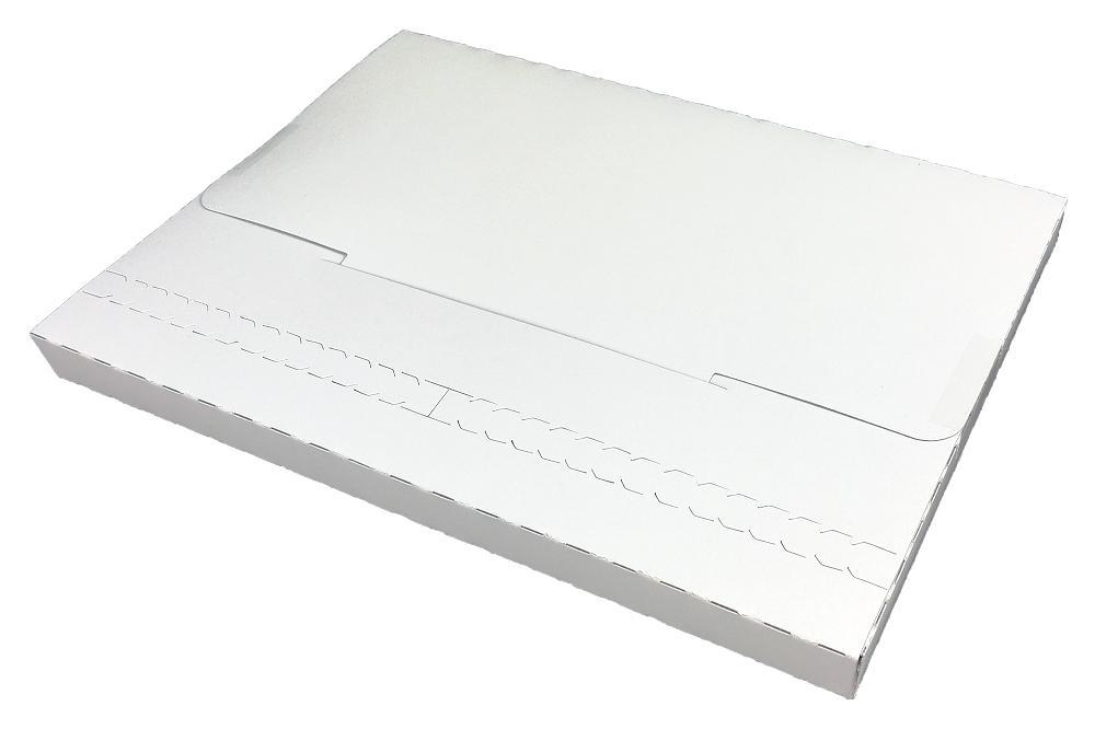【送料無料】 メール便専用ケース A5サイズ 600枚 mailcase-a5   ビジネス 仕事 郵便 郵送用 配達 手紙 封筒 レターケース 宅配 配達 パック サイズ別 用紙サイズ キャッシュレス 還元