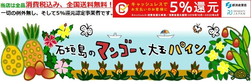 石垣島のマンゴーと大玉パイン:石垣島の美味しい物を「全国送料無料」でお届けします!