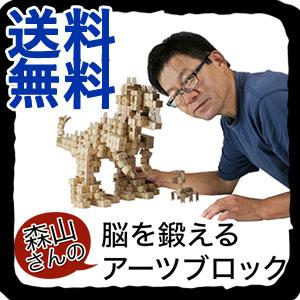 【即出荷】 【送料無料】森山さんの脳を鍛えるアーツブロック 80ピースセット [知育ブロック 木製ブロック 知育玩具 想像力 [知育ブロック 創造力 木製ブロック 想像力 脳トレ], 2019最新のスタイル:c2300eea --- canoncity.azurewebsites.net
