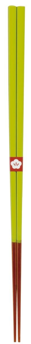 pion 箸 はし カトラリー104607 宅送 定番スタイル 若葉色 にっぽん伝統色箸23cm 607