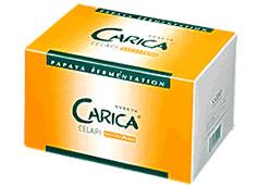 カリカセラピSAIDO-PS501 100包 済度 青パパイヤ 酵素 サプリメント