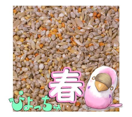 ぴよっちゅ セキセイ春用ブレンド 5kg×1 : 鳥の餌 えさ