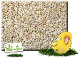 玄 ヒエ 500g×5 驚きの値段で 鳥の餌 注文後の変更キャンセル返品 えさ :