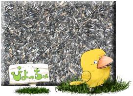 ニガーシード 25kg : 鳥の餌 えさ