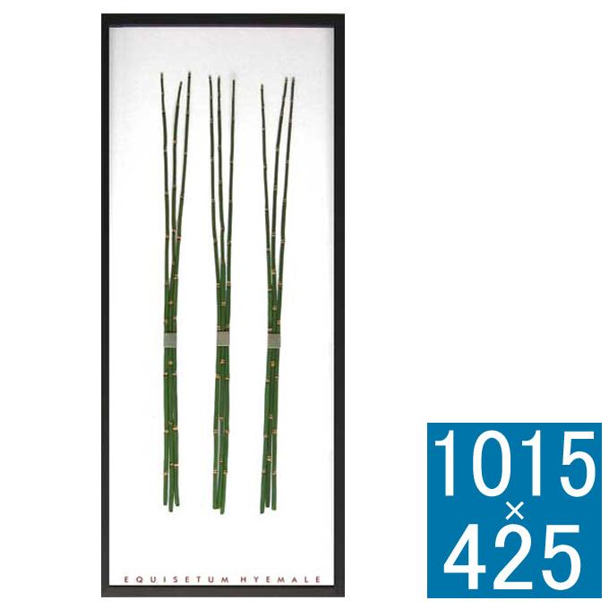 『アートフレーム F-style Frame Equisetum hyemaie』 フレーム アートフレーム 壁飾り 額縁 壁掛けインテリア 壁掛けアート フレームアート ディスプレイフレーム インテリアフレーム フェイクグリーン グリーンアート 人工観葉植物 おしゃれ ナチュラル
