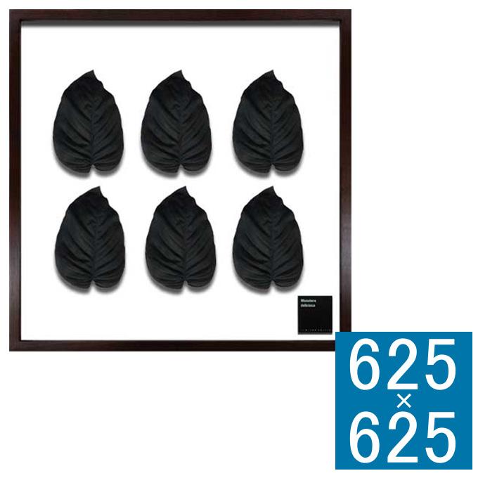 『アートフレーム F-style Frame 600 Hosta cv Black』 アートフレーム フレーム 壁飾り 額縁 壁掛けインテリア 壁掛けアート フレームアート ディスプレイフレーム インテリアフレーム グリーンアート フェイクグリーン 人工観葉植物 おしゃれ ナチュラル 正方形 壁掛け式