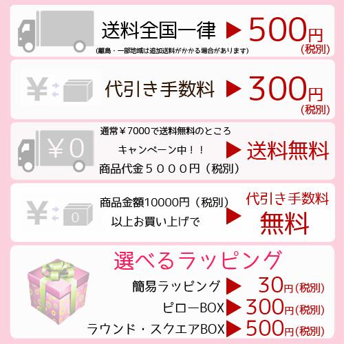aden+anais (ray den Ann door Ney) ★ snap bibb three pieces set ★ RED red collection Japan regular product