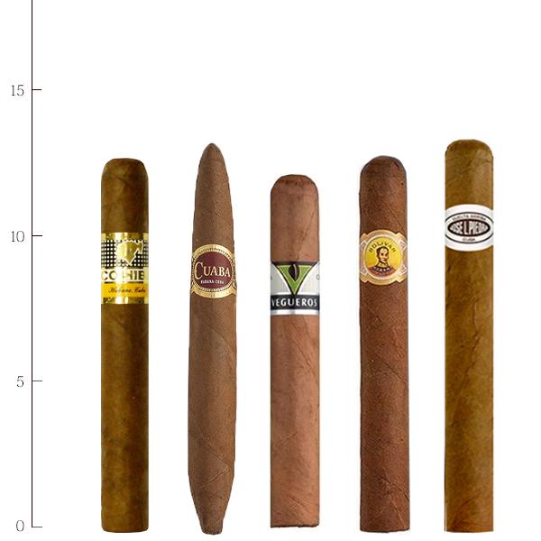 法律でタバコは初回に成人証明書の提出が必須です プレミアムシガー お試しセット 5本入 ≪A≫ キューバシガーセット 安心の定価販売 引出物 ペティコロナ系 ホセエルピエドラ タパドス クアバ ベグエロス 吸い比べコイーバ ボリバー