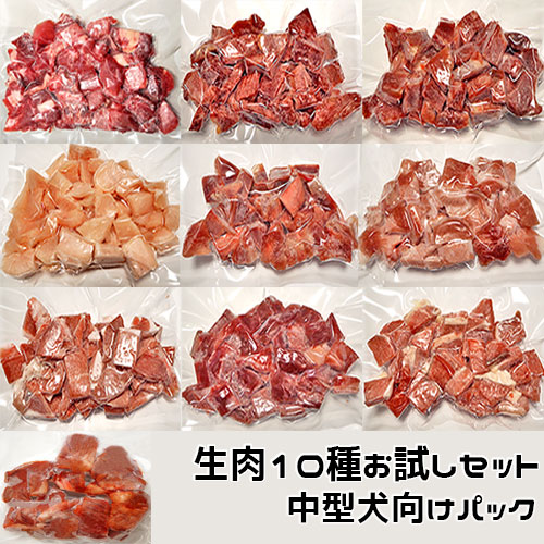 各種類のお肉を試していただくための中型犬向け小分けセットです 愛犬用 生肉10種お試しセット 中型犬向けパック 880g 各種生肉10種類 手作りごはん素材 クール便発送 結婚祝い 最新 冷凍真空パック ペット ドッグフード
