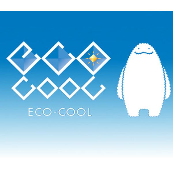 遮熱塗料 エコクールスマイルSi 4kg 一般濃色 屋根用 シリコン 太陽熱 反射 大日本塗料 Dワ 代引不可