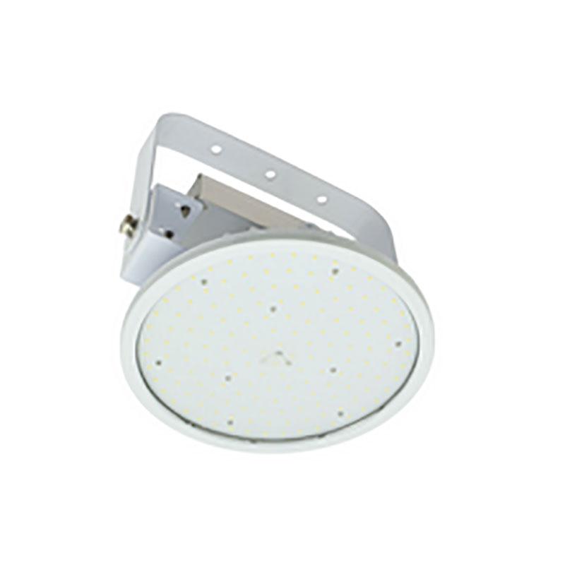 LED 屋外型 高天井用照明 ハイディスクV2 200W アーム式 吊下げ型 ワイド 昼白色 防雨型 工場用 L200V2-P-HW-50K 日動工業 代引不可