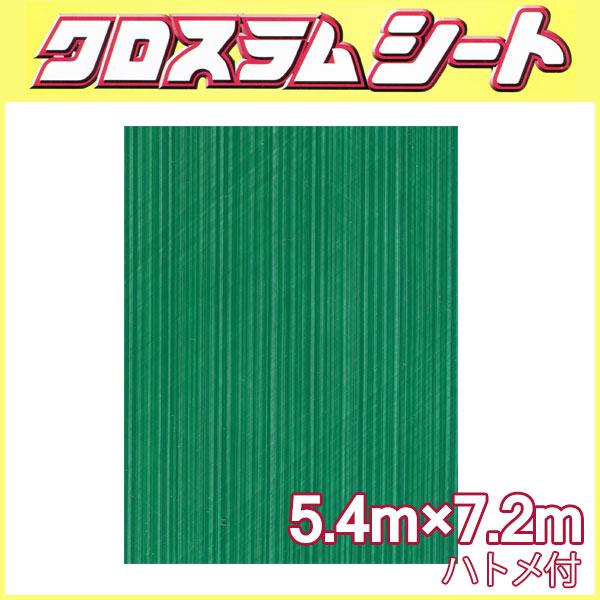 クロスラムシート 5.4 m × 7.2 m ハトメ付 【養生シート】 共B【代引不可】
