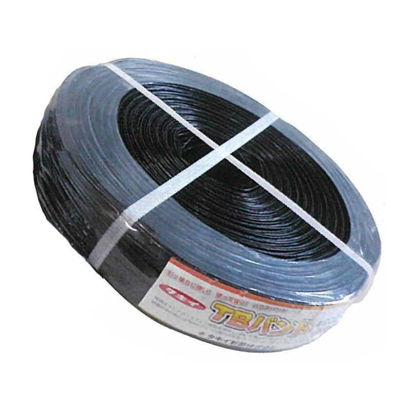 【10個】 タキイ TBバンド 黒 500m × 10mm 20本 × 2芯 ビニールハウス 用 バンド タ種 【代引不可】