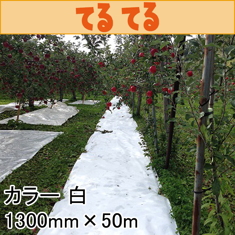 【4本】 1300mm × 50m 白 てるてる 遮光ネット 寒冷紗 JX ANCI タ種 【代引不可】