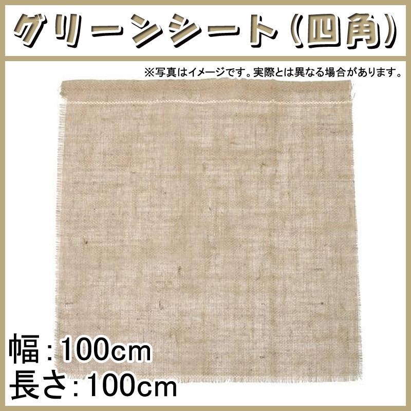 【100枚】 グリーンシート 四角 100 100cm × 100cm 早S【代引不可】