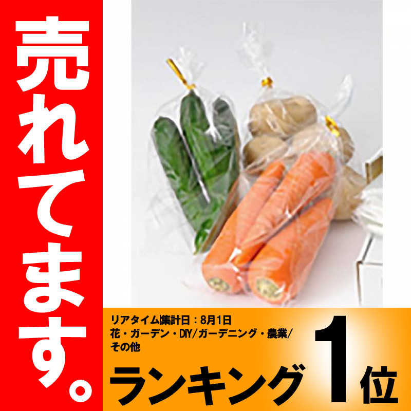 ボードン袋 4穴プラ付 No.10 0.02mm厚×180×270 10000枚入 野菜出荷透明袋 日A【代引不可】