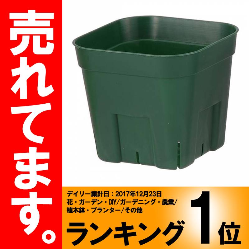 【北海道配送不可】【800個】 105型 モスグリーン プレステラ ポット 鉢 おしゃれ 日本ポリ鉢販売 タ種 【代引不可】