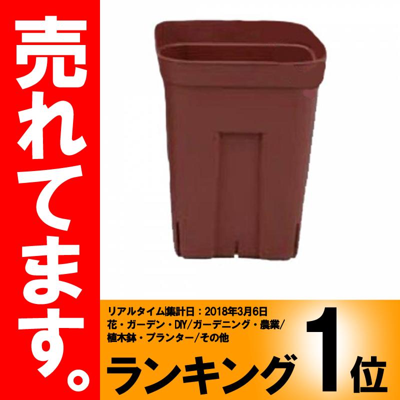 【北海道配送不可】【600個】 深型105 ブラウン プレステラ ポット 鉢 おしゃれ 日本ポリ鉢販売 タ種 【代引不可】