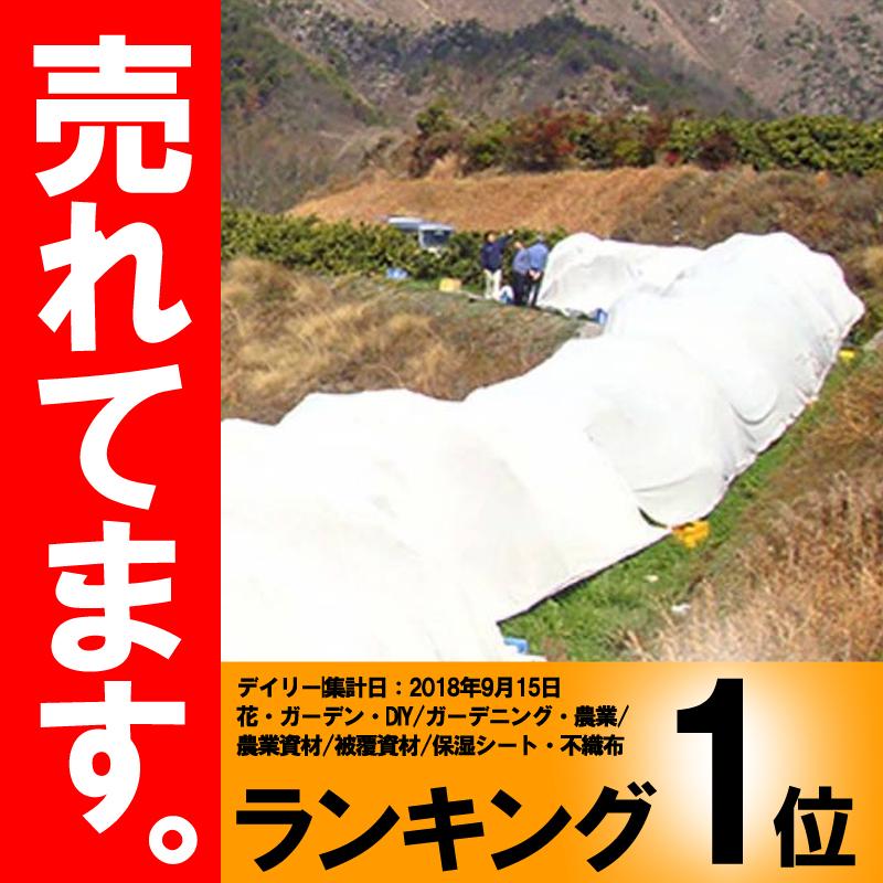 サニーセブン T-750 4m×50m 果樹保護シート 柑橘系 被覆資材 石川殖産 D