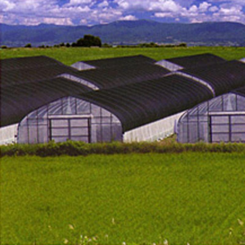 農業用 遮光ネット 3m × 50m 黒 遮光率80~85% ワイドスクリーン 遮光ネット BK1012 寒冷紗 日本ワイドクロス タ種 代引不可