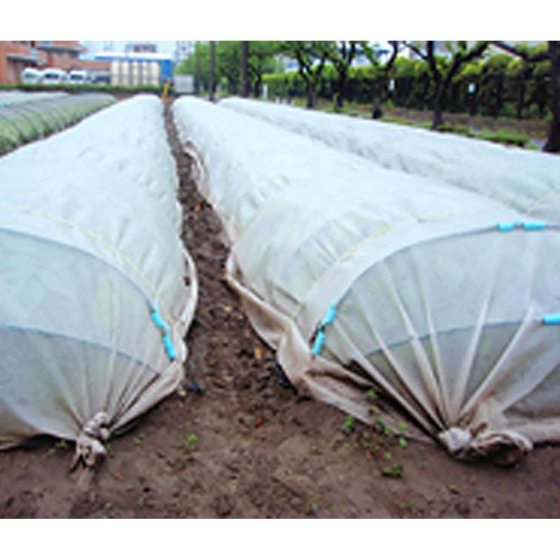 ファッションの × 100m 遮光ネット 【】:農業用品販売のプラスワイズ 寒冷紗 ANW10 白(透明) ぬくぬく ANCI タ種 3m JX-ガーデニング・農業
