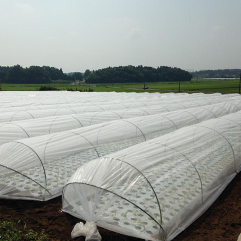 世界有名な 3000mm × 100m ANCI 100m 白 遮光率25% ラウンドクール 遮光ネット 寒冷紗 JX JX ANCI タ種【】:農業用品販売のプラスワイズ, Devine:208a59a2 --- nedelik.at