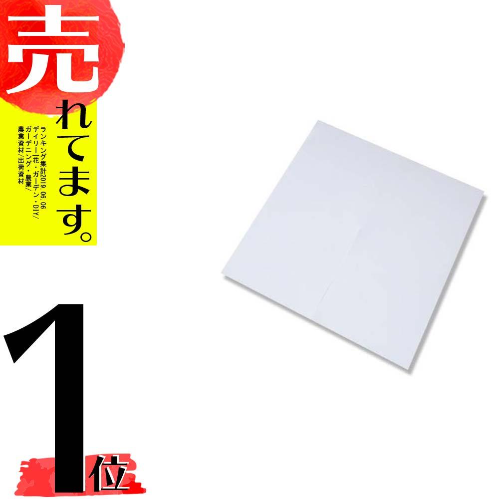 【2000枚】果実袋 ぶどう 切込みぶどう傘 乳白 220×220 タ種D