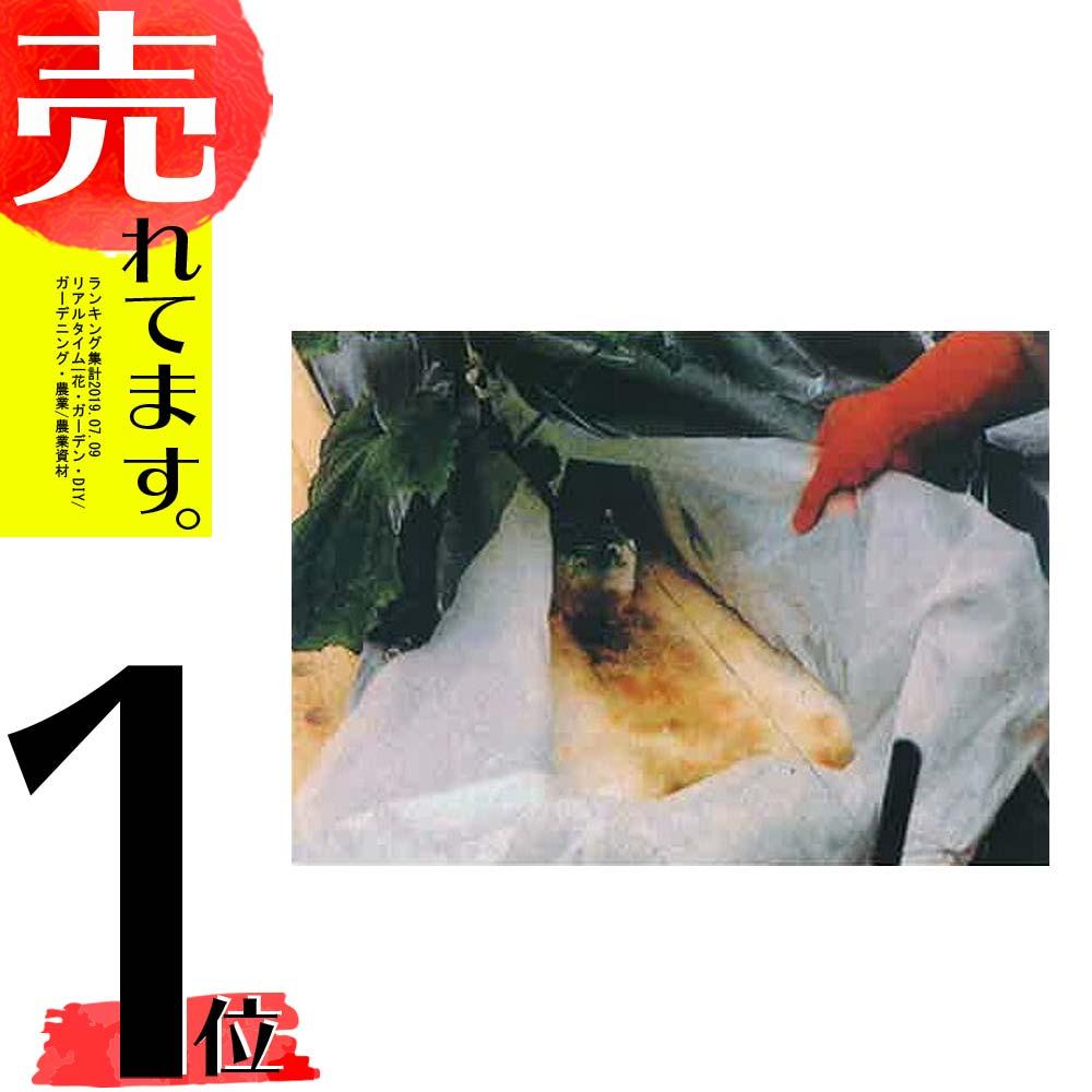 防根 透水シート 厚み0.1mm×幅125cm×長さ100m 東洋紡 TOYOBO カ施【代引不可】