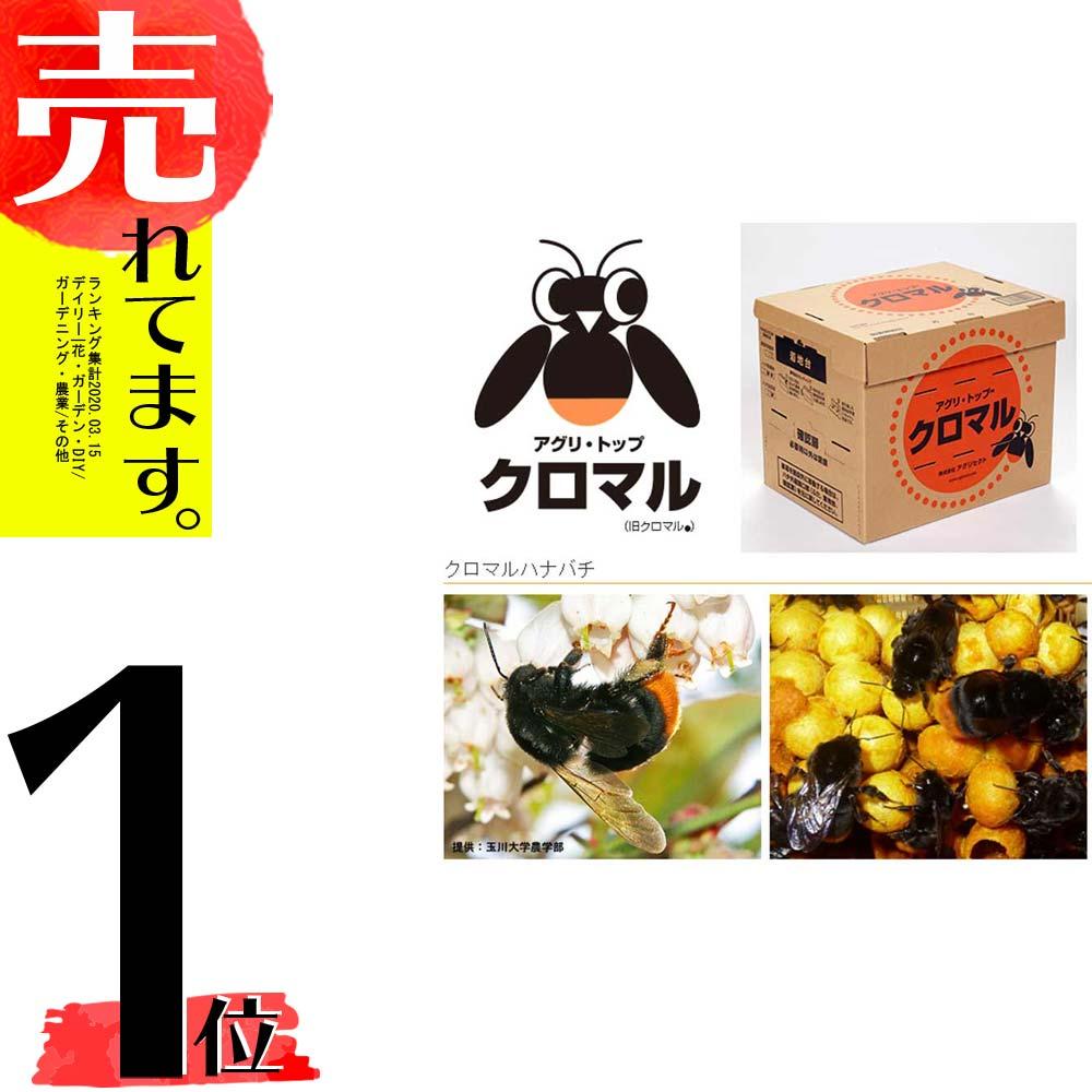 【北海道不可・要着日指定・時間指定不可】 受粉用蜂 ハチ 50頭以上 花粉・蜜・巣箱セット アグリセクトクロマル DX クロマルハナバチタ種【代引不可】