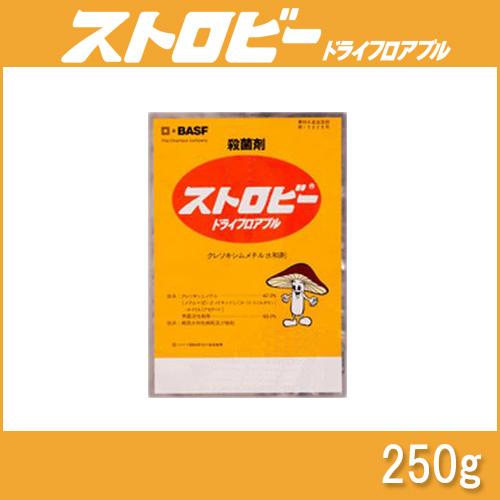 【5個】 ストロビードライフロアブル 250g 殺菌剤 農薬 イN【代引不可】